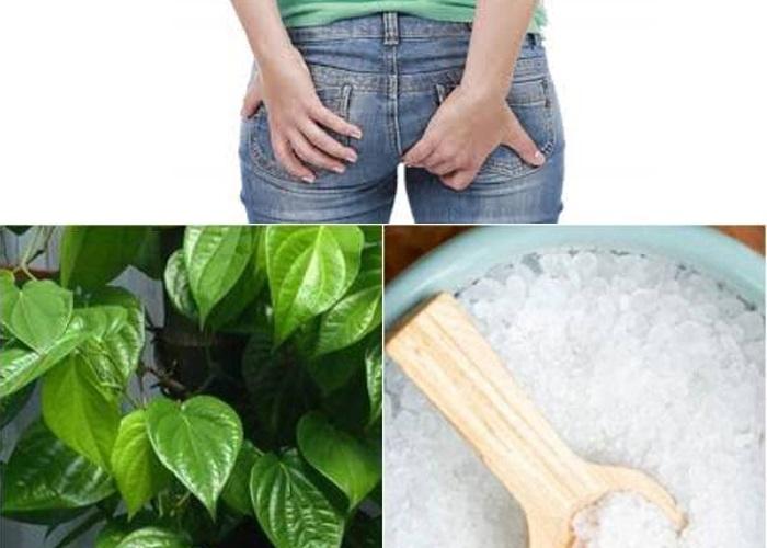 Cách 1: Xông hơi lá trầu không chữa bệnh trĩ 1