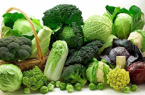 3.Ưu tiên cho thực phẩm chứa nhiều chất xơ 1
